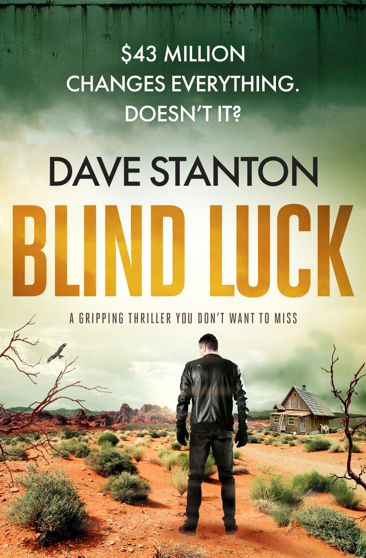 Blog Blitz: Blind Luck by Dave Stanton