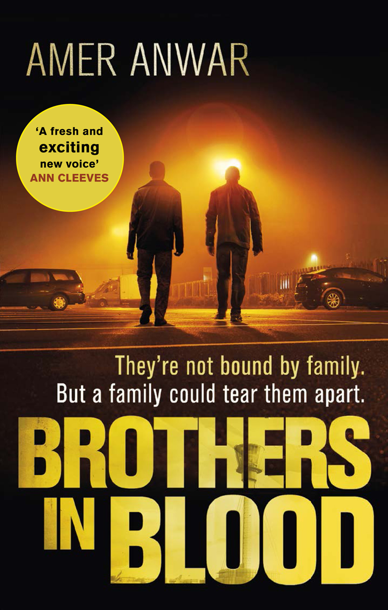 brothers-in-blood-cover.jpg