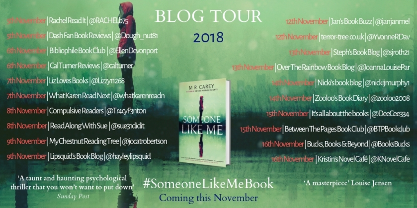 SOMEONE LIKE ME BLOG TOUR (2).jpg