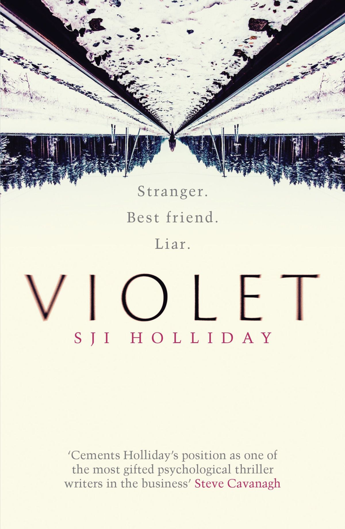 Blog Tour:  Violet by S.J.I. Holliday Ellen's Review